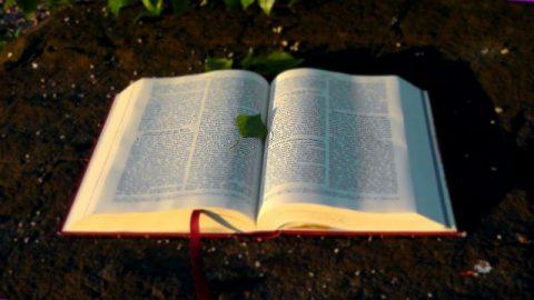 Η σχέση μεταξύ Θεού και Βίβλου (1)
