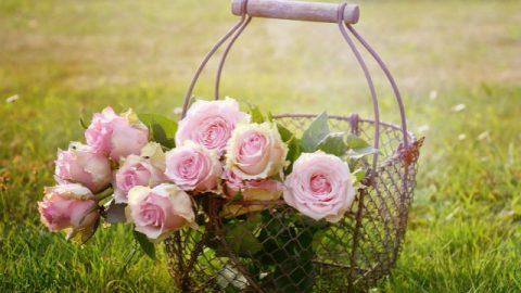 Διαφώτιση από δύο καλάθια με λουλούδια