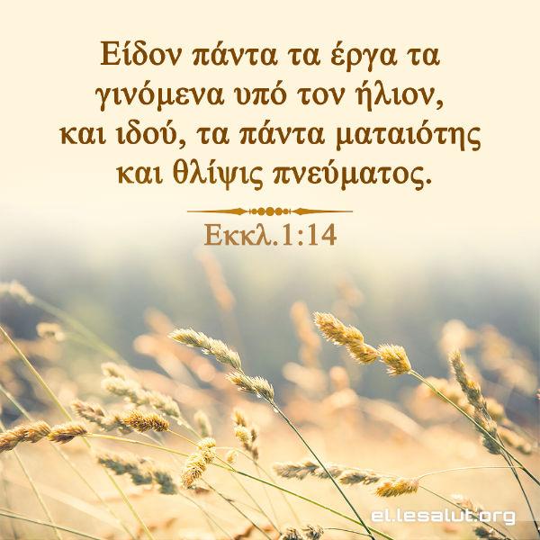 Είδον πάντα τα έργα τα γινόμενα υπό τον ήλιον, και ιδού, τα πάντα ματαιότης και θλίψις πνεύματος. (Εκκλ.1:14)