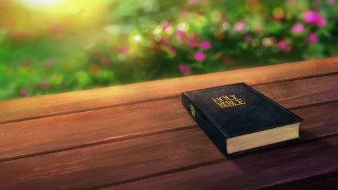 Τι είδους βιβλίο είναι η Βίβλος