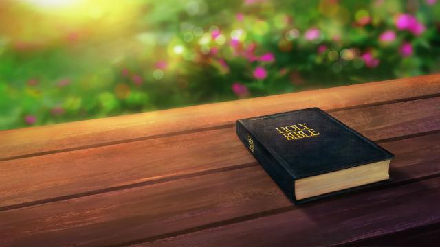 τι ειναι η βιβλος