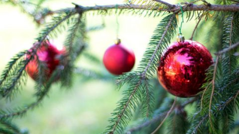 Ποια είναι η προέλευση και η σημασία των Χριστουγέννων;