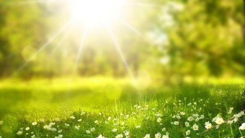 Το βασικό περιβάλλον διαβίωσης που δημιουργεί ο Θεός για την ανθρωπότητα - Η θερμοκρασία