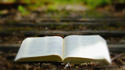 Οι προβληματισμοί μου για την κατάρα του Κυρίου Ιησού προς τους Φαρισαίους: «Δεν θέλει συγχωρηθή εις αυτόν ούτε εν τούτω τω αιώνι ούτε εν τω μέλλοντι»