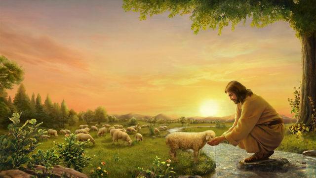 耶穌餵羊羔喝水