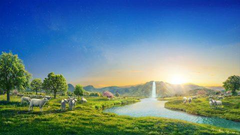 Ο δρόμος της αιώνιας ζωής