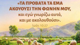 Ιωάννης 10:27
